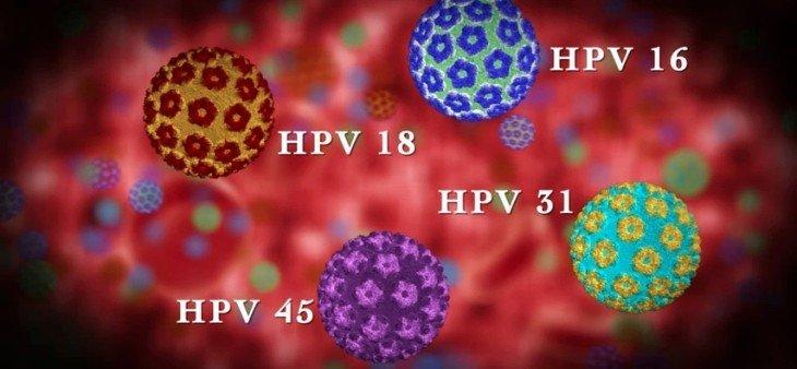 Virus Gây Bệnh Sùi Mào Gà